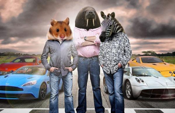 B3ta Com Challenge If Animals Had Cars